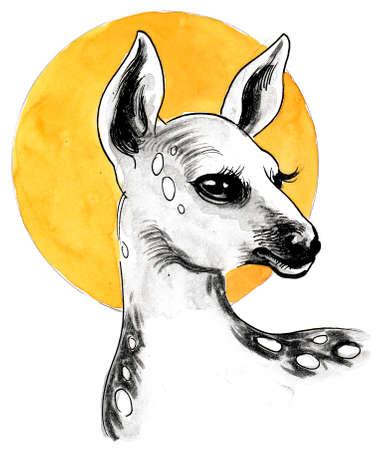 Baby deer head. Ink and watercolor