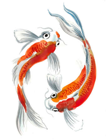 Koi fishes. Ink and watercolor