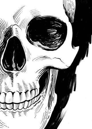 Human skull. Ink black and white drawing Stockfoto - 120883405