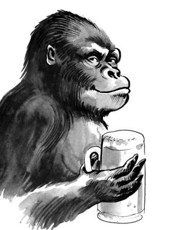 Gorilla with a beer mug. Ink black and white drawing 版權商用圖片