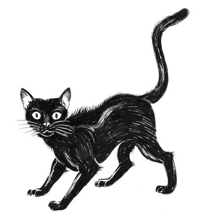 Scared black cat. Ink black and white drawing