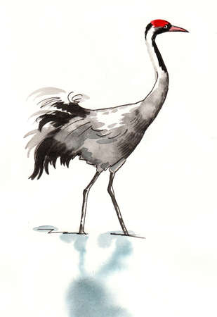 Ink and watercolor sketch of a crane bird Stok Fotoğraf - 136751542