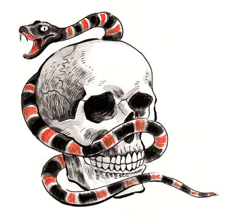 Human skull and snake. Ink and watercolor illustration