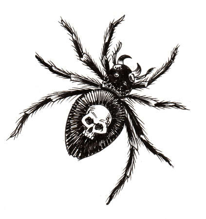 Deadly scary spider. Ink black and white drawing