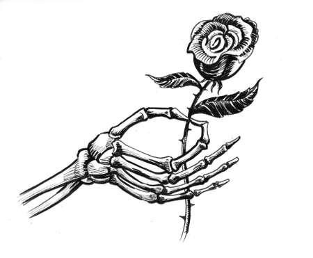 Skeleton hand holding a rose flower. Ink black and white drawing Zdjęcie Seryjne - 137592461