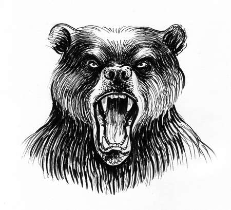 Angry bear head. Ink black and white drawing