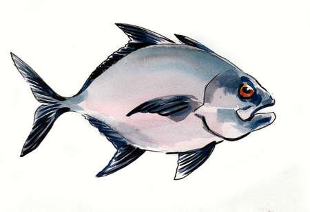 Piranha fish. Ink and watercolor drawing Zdjęcie Seryjne - 137592579