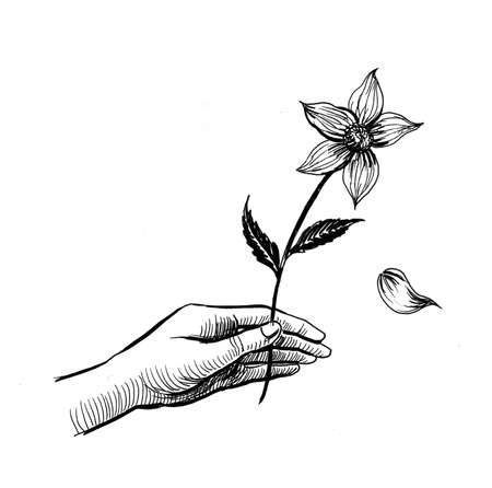 Hand with a flower. Ink black and white drawing