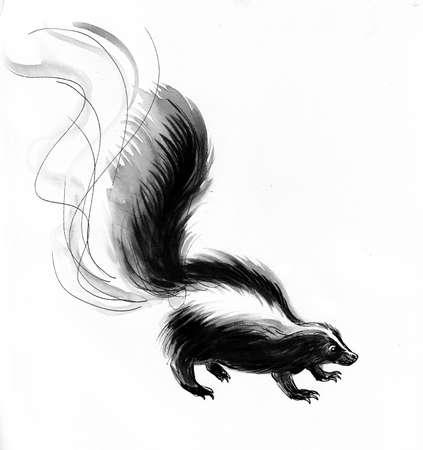 Skunk animal. Ink and watercolor drawing Zdjęcie Seryjne - 137766742
