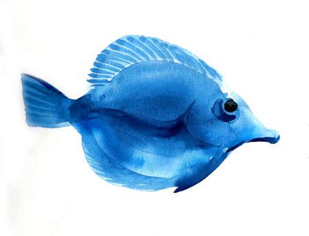 Blue coral watercolor fish