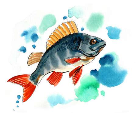 Fish in water. Watercolor painting Zdjęcie Seryjne - 137766612