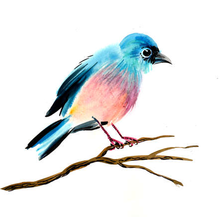 Blue bird on a tree branch. Watercolor painting