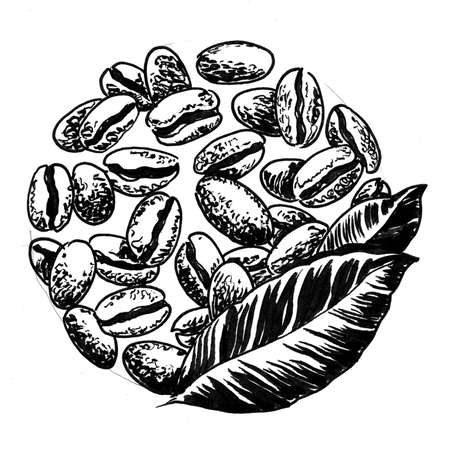 Coffee beans and leaves. Ink black and white drawing