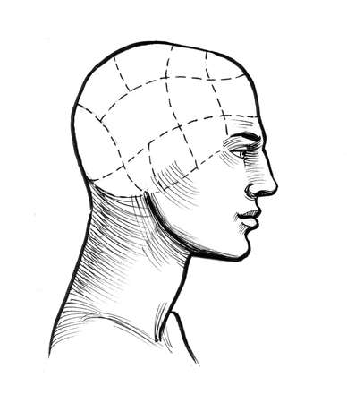 Human head, scheme. Ink black and white drawing Фото со стока