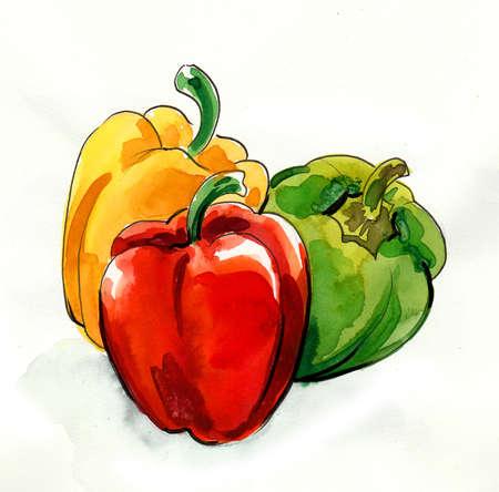 Red pepper vegetables. Ink and watercolor drawing 版權商用圖片