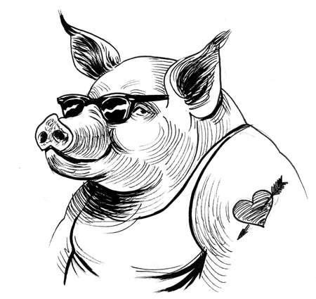 Cool pig in sunglasses with a heart, tattoo drawing on white 版權商用圖片