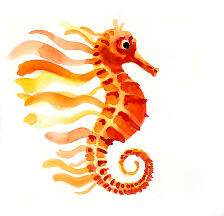 Orange seahorse fish. Watercolor illustration Фото со стока