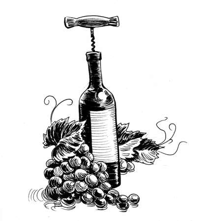 Grapes and bottle of wine. Ink black and white drawing