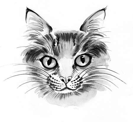 Cat head. Ink and watercolor illustration 版權商用圖片