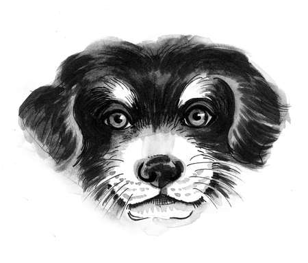 Cute puppy dog. Ink black and white drawing