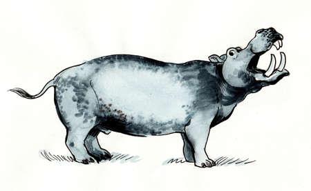 Big standing hippopotamus. Ink and watercolor illustration 版權商用圖片