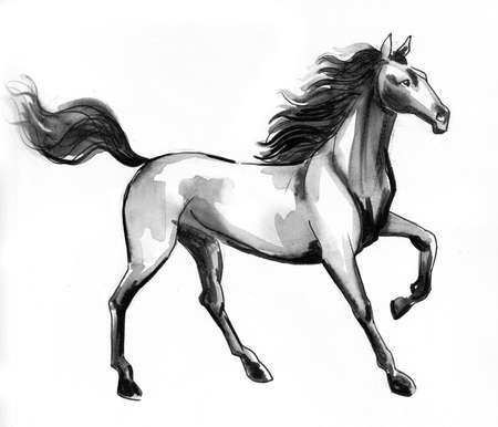 Standing horse. Ink and watercolor illustration 版權商用圖片