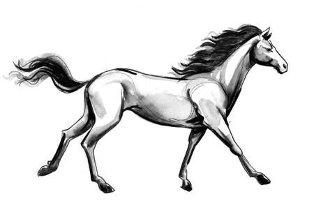 Running horse. Ink and watercolor illustration