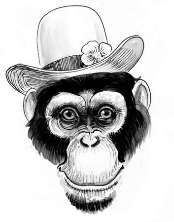 Chimpanzee in hat. Ink black and white