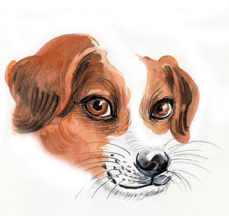 Cute puppy head. Ink and watercolor illustration