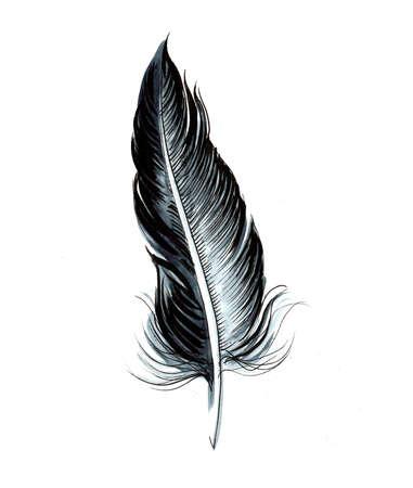 Birds feather. Ink and watercolor drawing Zdjęcie Seryjne