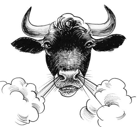 Angry bull head. Ink black and white drawing