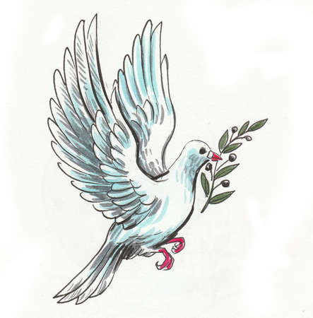 White dove bird with an olive branch in its beak. Ink and watercolor drawing