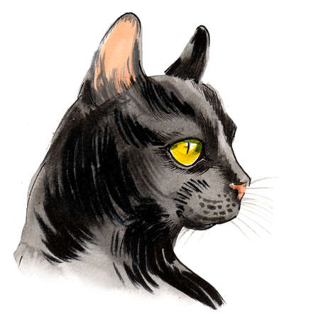 Black cat with green eyes. Ink and watercolor drawing