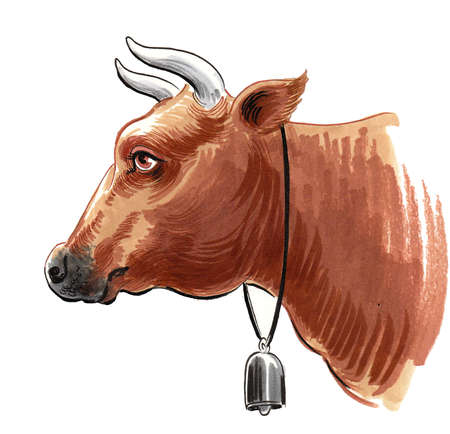 Cow head with a bell. Ink and watercolor drawing