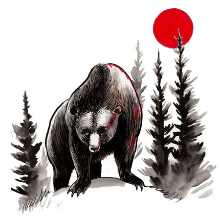 Wild grizzly bear in the woods. Ink and watercolor drawing