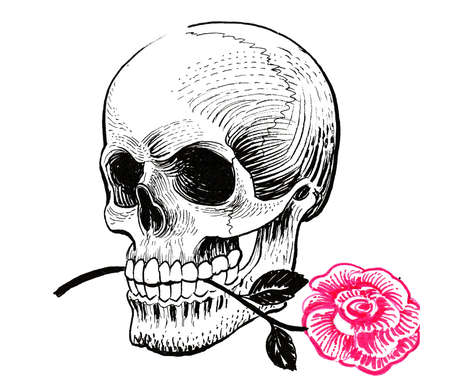 Human skull and red rose flower. Ink black and white drawing