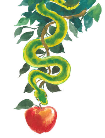 Green snake and red apple fruit. Ink and watercolor illustration
