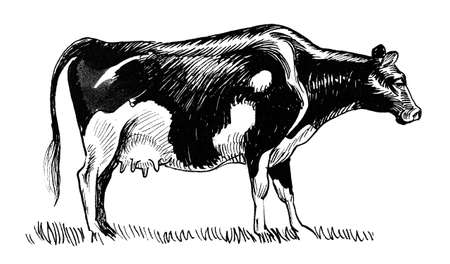 Grazing cowboy. Ink black and white drawing Stok Fotoğraf