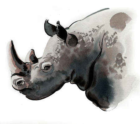 Rhino head. Ink and watercolor drawing