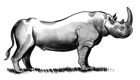 Standing African rhino. Ink and watercolor drawing Zdjęcie Seryjne
