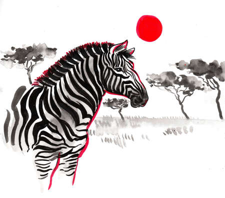 Zebra in African savanna. Ink and watercolor drawing