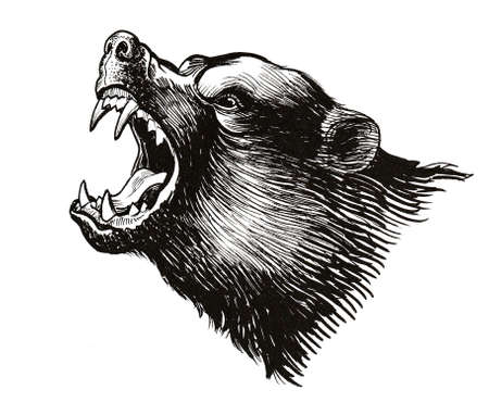 Roaring grizzly bear illustration.