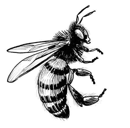 Flying bee illustration.