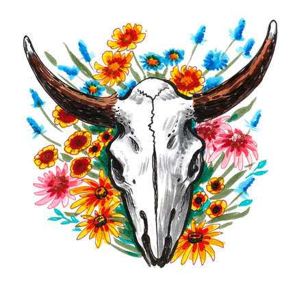Bison skull and flowers. Ink and watercolor drawing