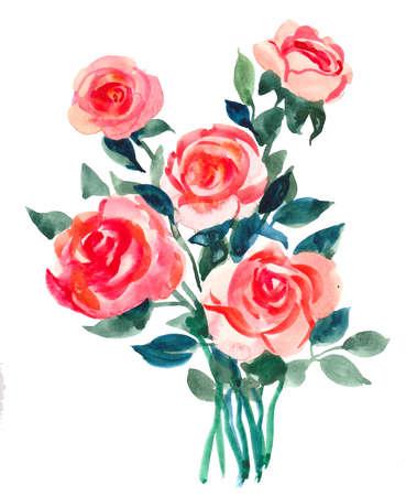 Rose flowers. Watercolor painting Standard-Bild
