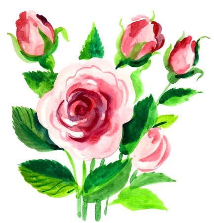 Rose flowers bouquet. Watercolor painting