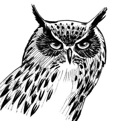 Owl bird head. Ink black and white drawing Standard-Bild