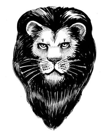 Lion head with black mane. Ink black and white drawing