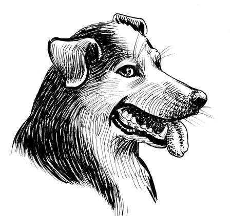 Cute dog head. Ink black and white drawing