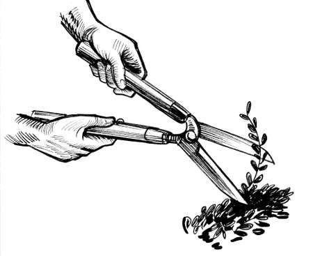 Hands with gardener scissors. Ink black and white drawing